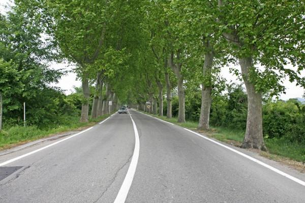 European Transport Safety Council welcomes deal on safer EU road rules