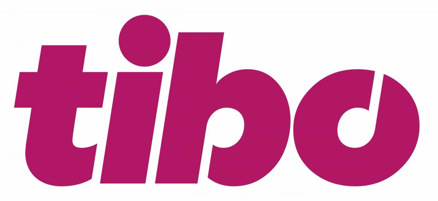 Вузы Беларуси – постоянные участники TIBO