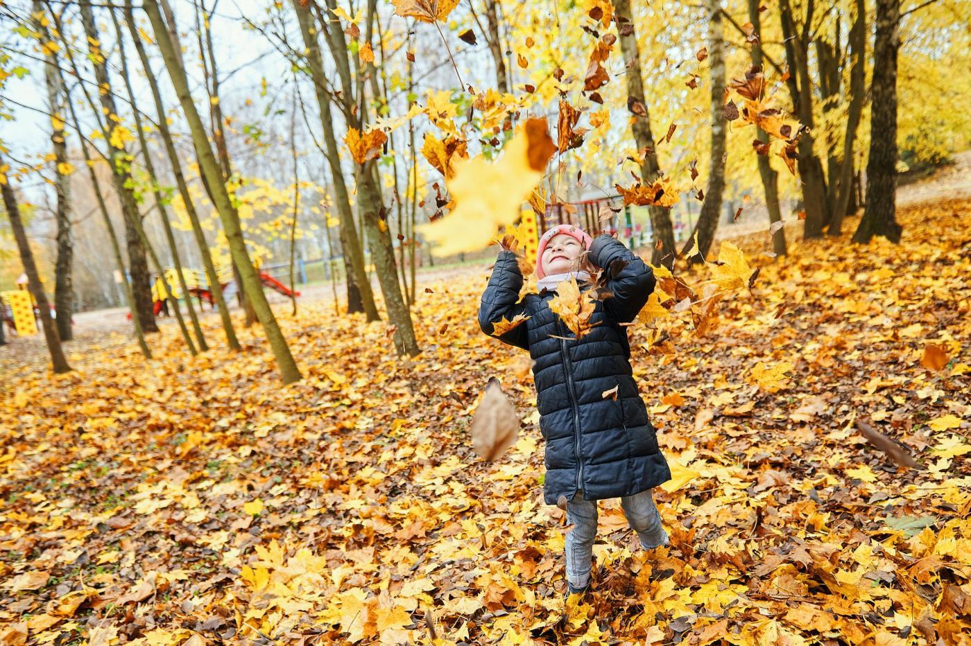 Осенние каникулы в ДОЛ «Политехник»